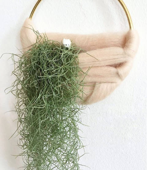 Plant Wall Hanging Ore + Wool