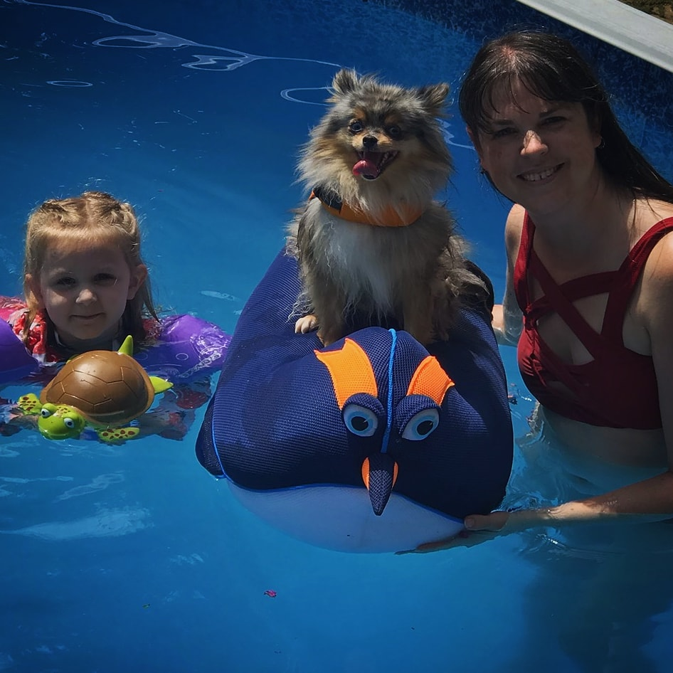 young girl with plastic turtle, pomsky in life vest sitting on blue and orange penguin floaty, author, woman in red swimsuit, all in pool